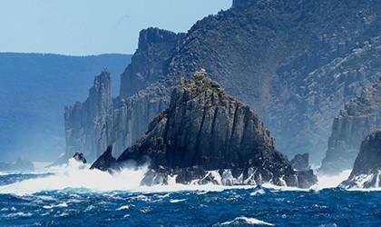 coral-expeditons-d9-tasman-island