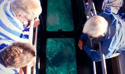 Glass Bottom Boat Coral Viewing