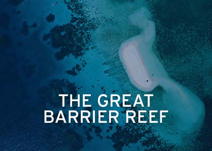 Great Barrier Reef Coral Expeditions