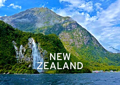 New Zealand Coral Expeditions Normal