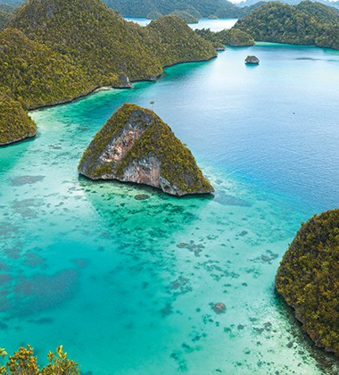 Spice Islands & Raja Ampat Coral Expeditions