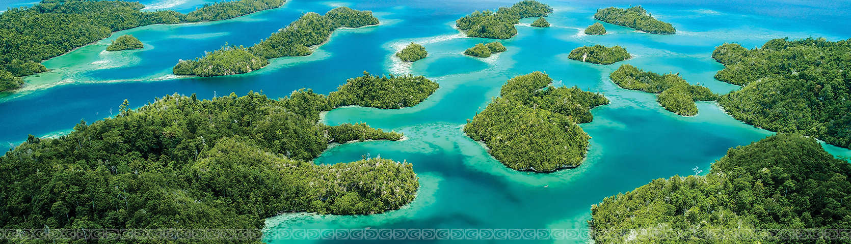 Sulawesi Circle Coral Expeditions