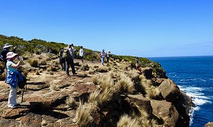 Coastal Treks Of Tasmania TH