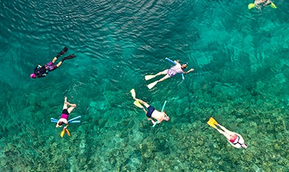 Snorkelling Reef with Coral Expeditions