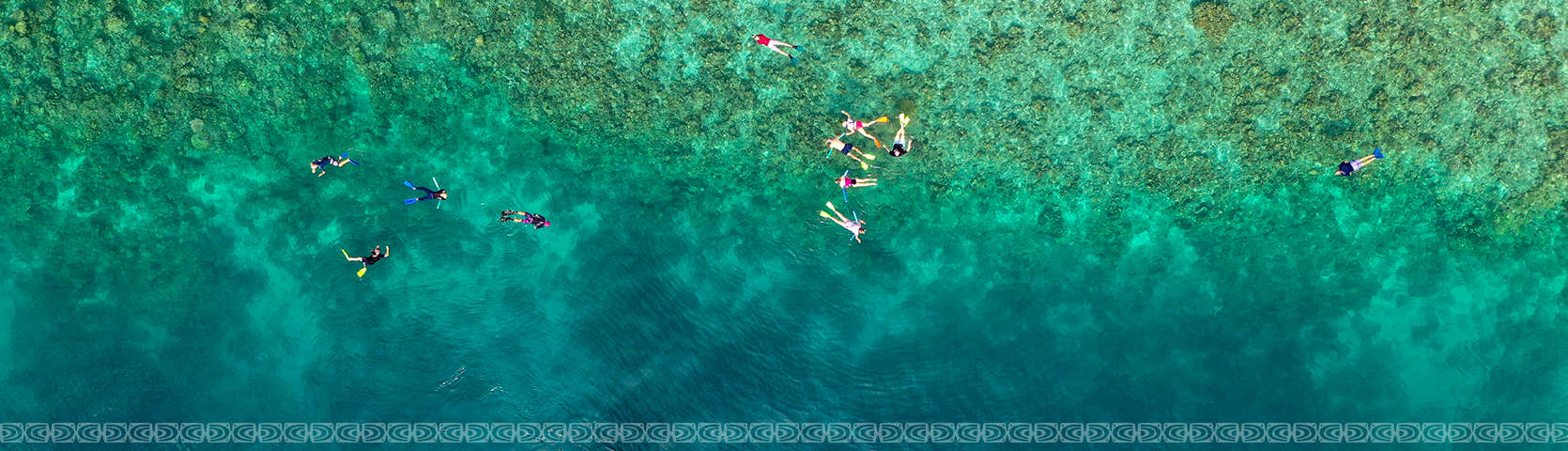 Snorkelling with Coral Expeditions