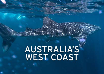 Australia's West Coast Coral Expeditions
