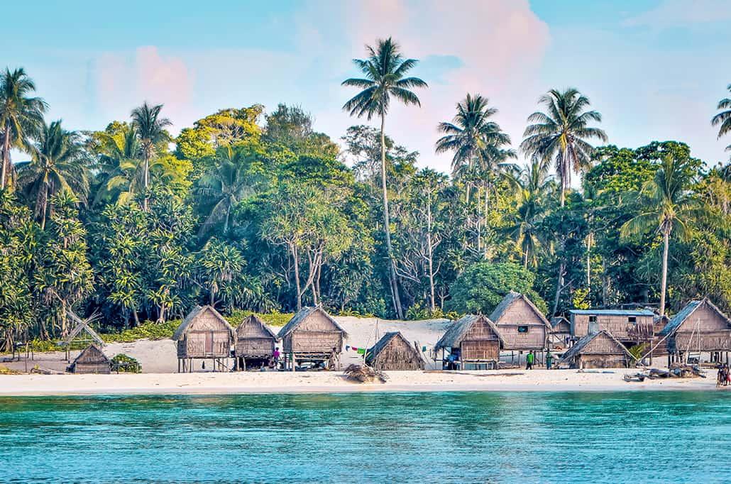 ISLAND TRAILS OF THE SOLOMONS & VANUATU 2