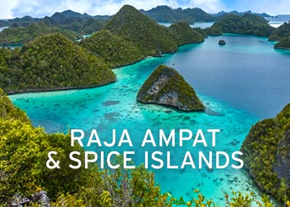 Raja Ampat & Spice Islands Coral Expeditions