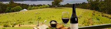Best Tasmania Food and Drink Experiences
