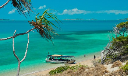 Torres Strait Coral Expeditions