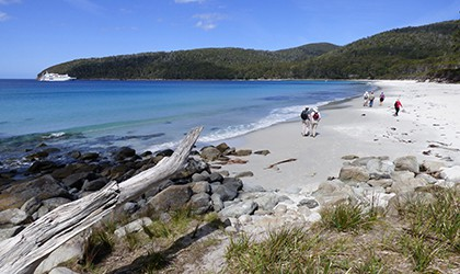 Fortescue Bay walk