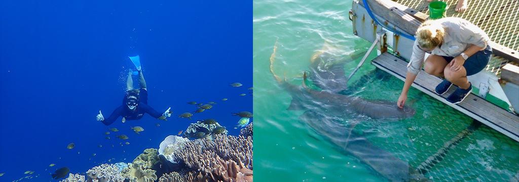Mast Reef Guide Marysia