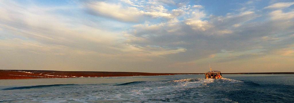 Montgomery Reef Scenery