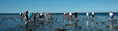 Explore Montgomery Reef