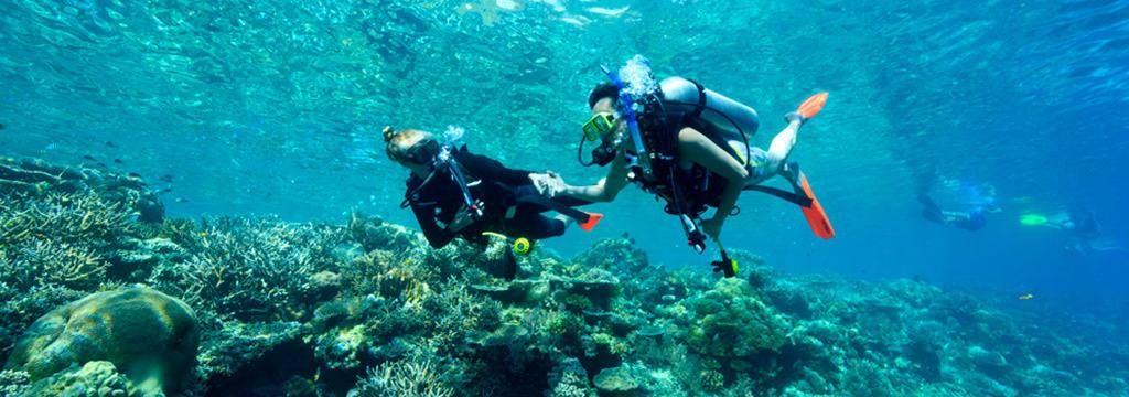 Rowley Shoals Marine Life