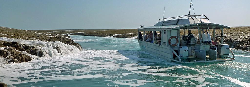 Xplorer at Montgomery Reef