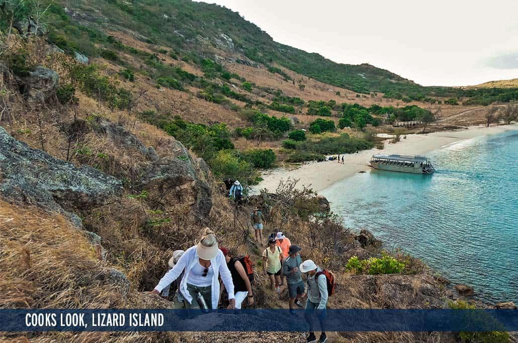COOKS LOOK, LIZARD ISLAND