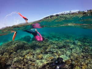 Snorkelling in Summer at Mackay Reef. Image Tourism Tropical North Queensland.