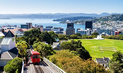 New Zealand Coral Expeditions