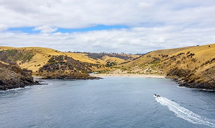 Kangaroo Island Western River Cove