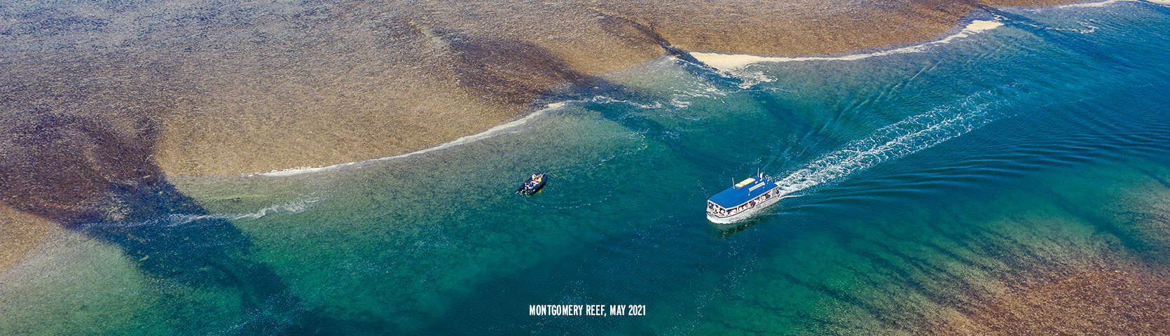 Montgomery Reef with Coral Expeditions May 2021