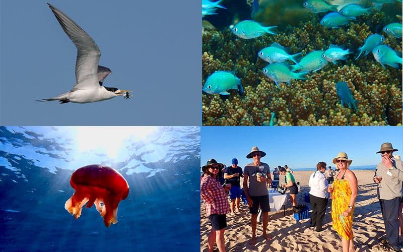 Ningaloo Voyage Log - Murion Islands