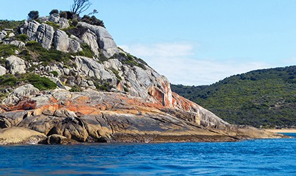 Deal Island, Kent Group, Tasmania