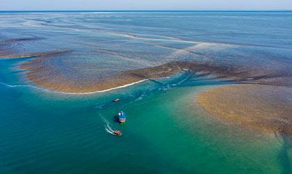 Montgomery-Reef-The-Kimberley-Western-Australia